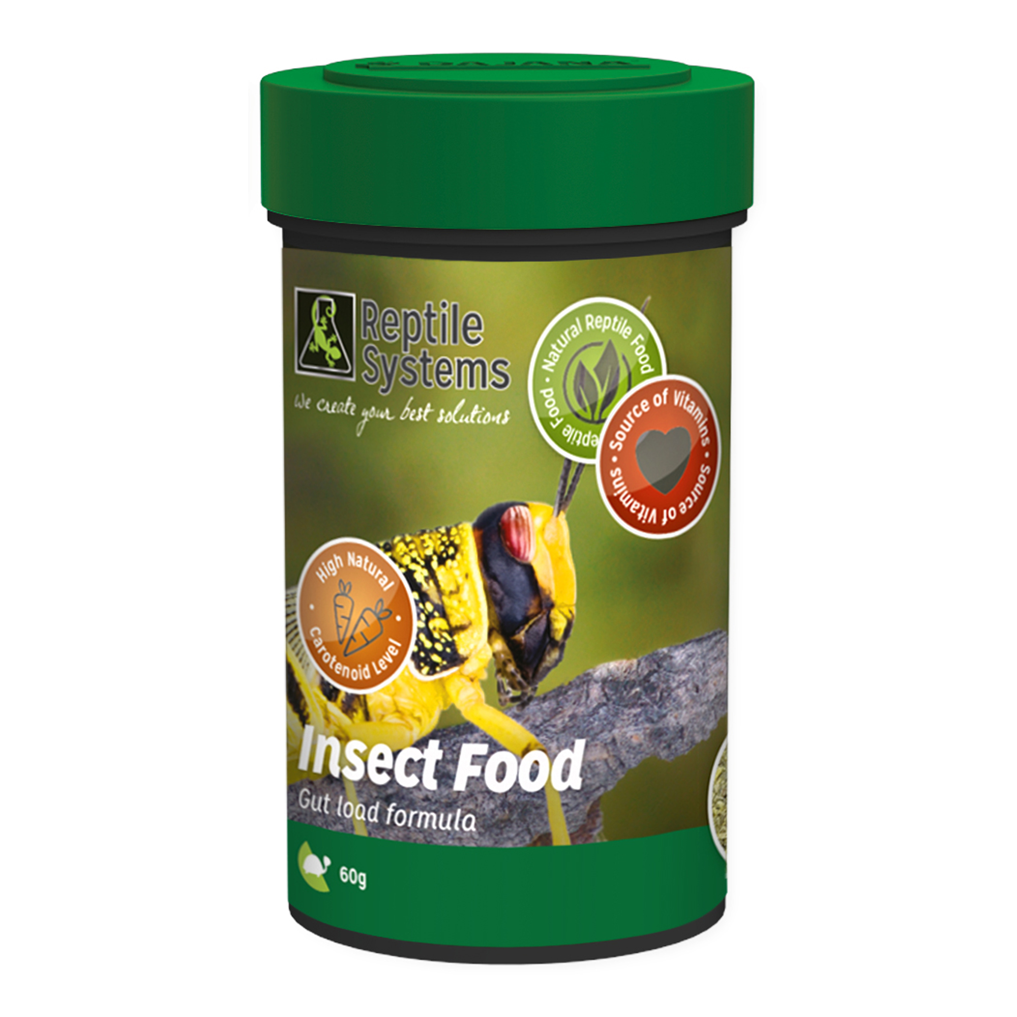 Insect Food UK