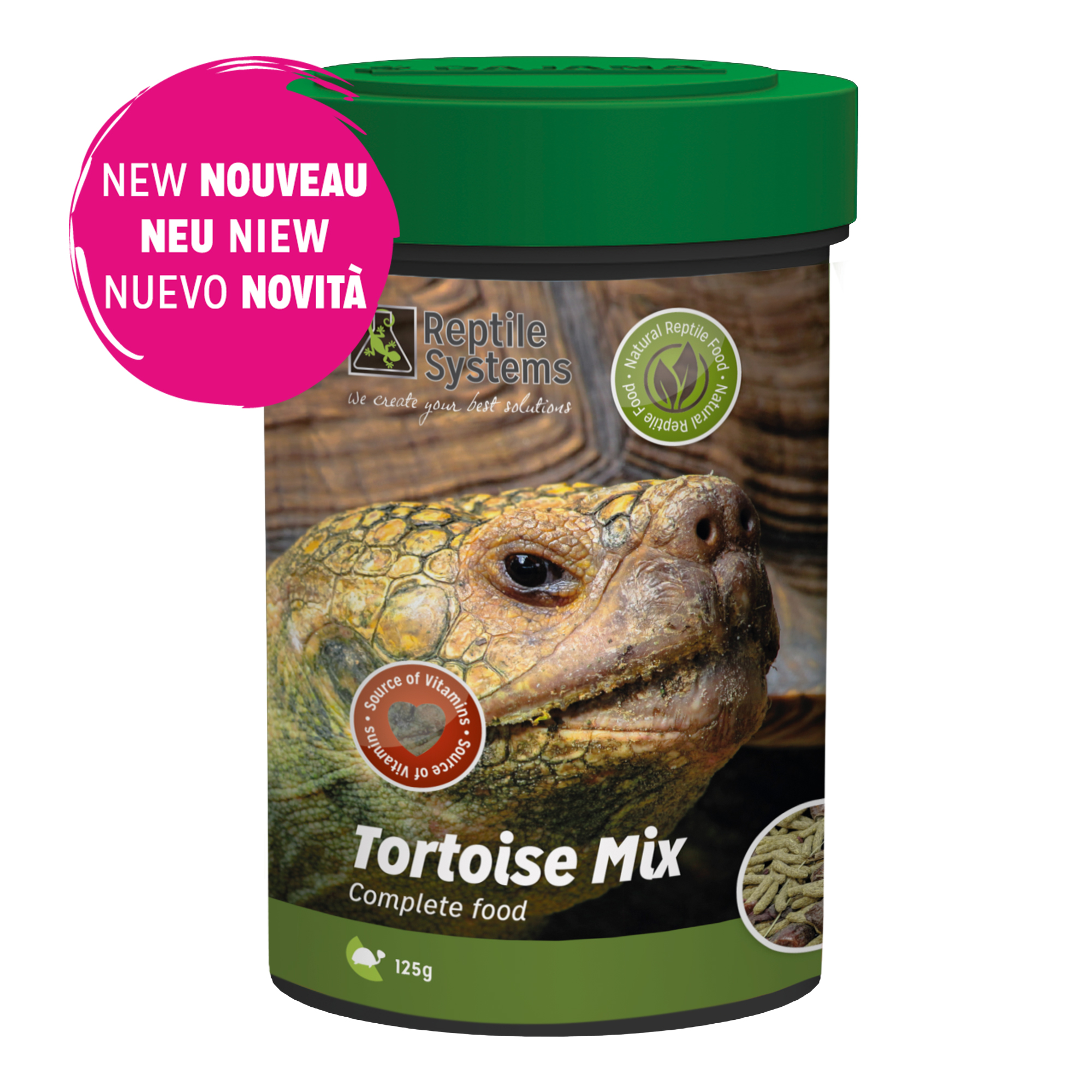 Tortoise Mix UK